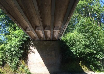 Bestimmung Traglast, Brücken Ortsgemeinde Rapperswil-Jona